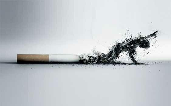 сигар Марихуана